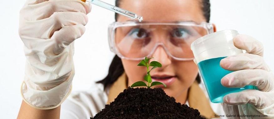 Защо да тестваме почвата през есента?